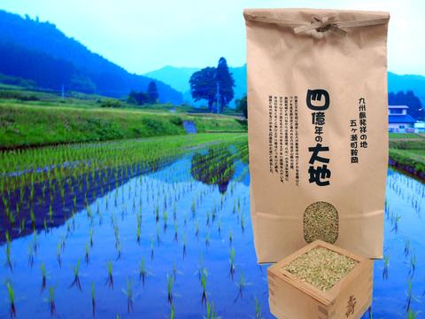 四億年の大地米 玄米 コシヒカリ 5kg