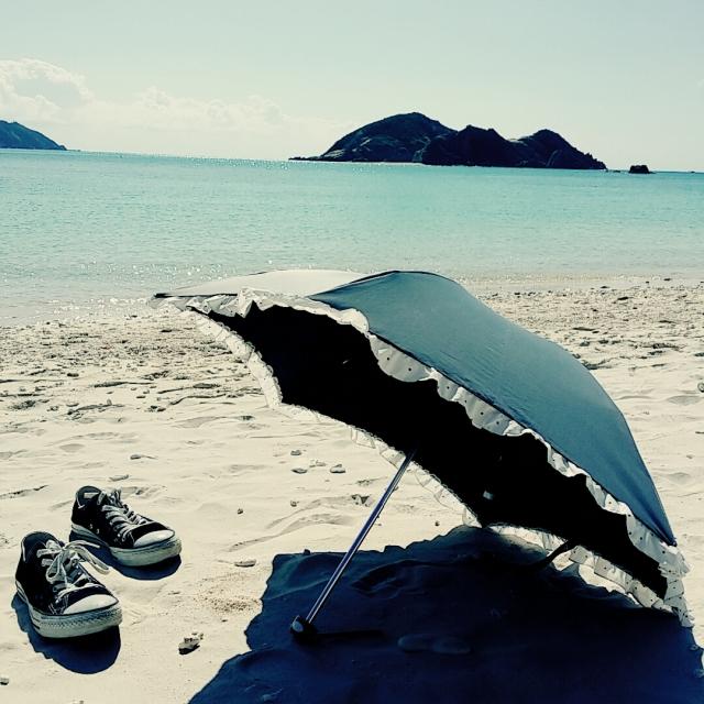 日傘。晴雨兼用。